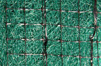 TRX Turf Reinforcement Close-Up